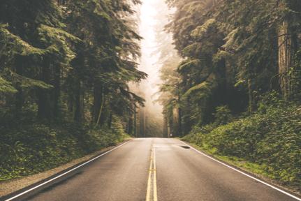 5 Βήματα για να Αναλάβεις Δράση και να πιάσεις τους Στόχους σου